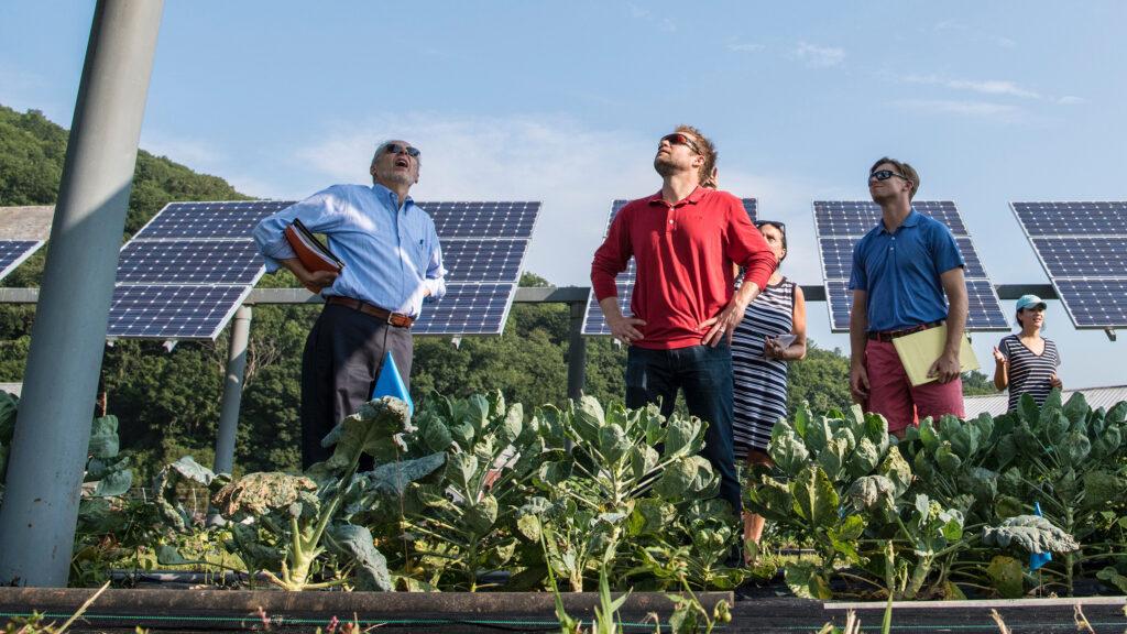 Solarmodule gegen den Hunger: Können mehr Menschen ernährt werden, wenn die Böden effizienter genutzt werden?